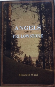 Angels over Yellowstone by elisabeth ward